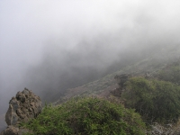 nebel7.jpg