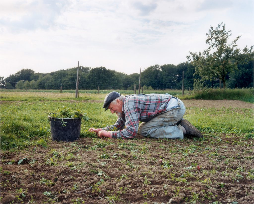 The Good Earth von Andreas Weinand im Fotoraum Köln E.V. Germany / Ruhr region / from the project 'The Good Earth' / Mai 2001 / Farmer kneeling on the field pulling up weeds into an overloaded bucket